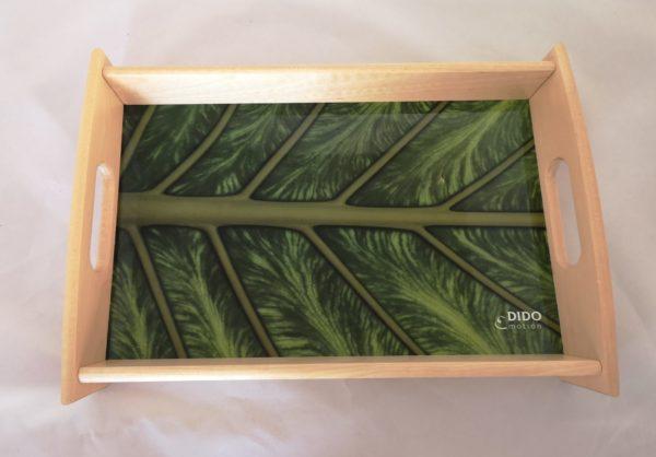 bandeja-madera-foto-origen